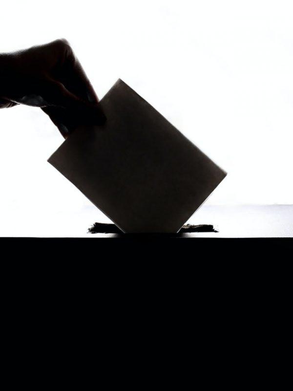 votat, decizie, alegeri, bani